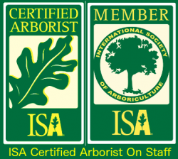 Credentials J A Weaver S Jaw S Tree Service Inc